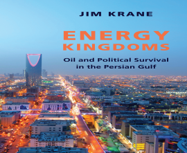 "کتاب ""Energy Kingdoms"""